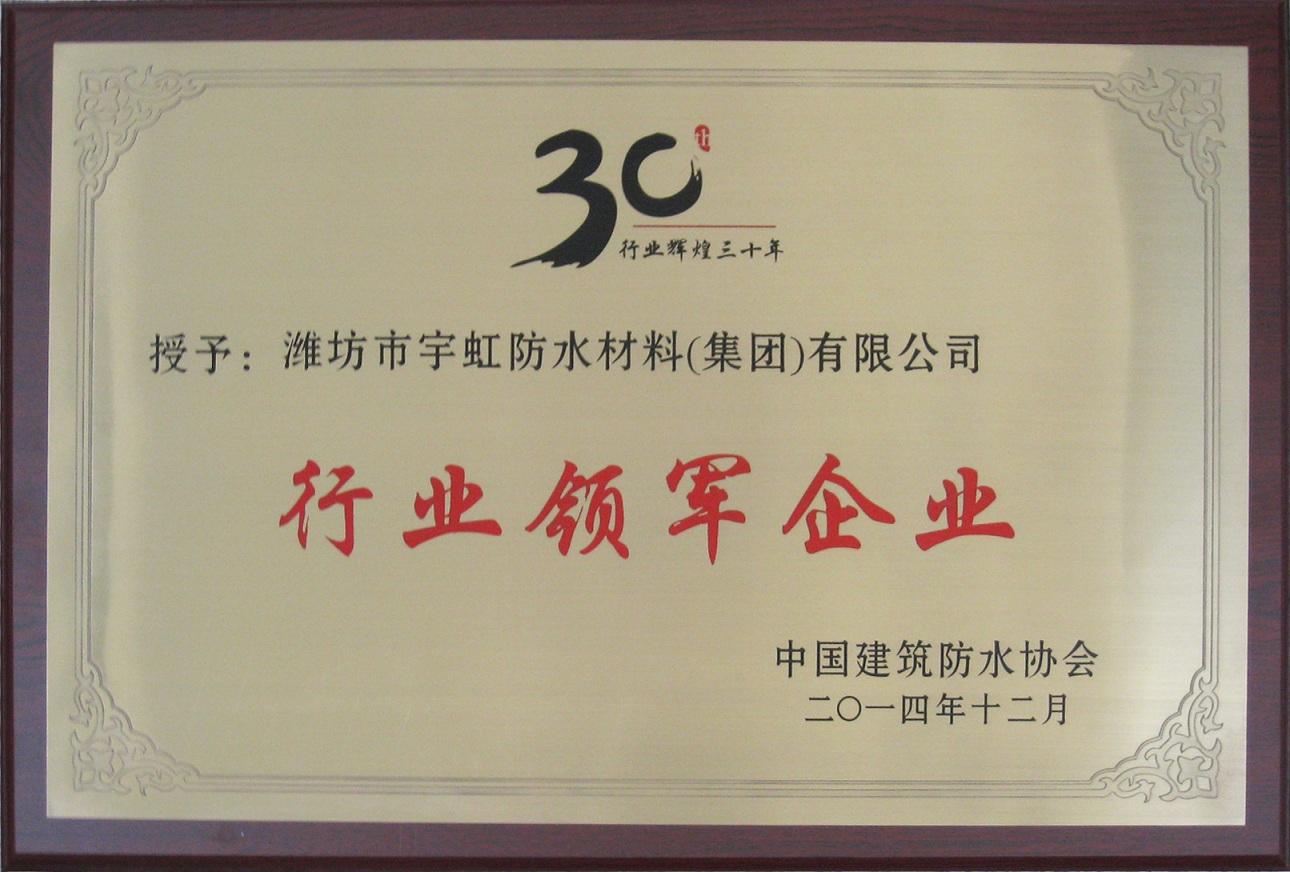 中国防水行业领军企业