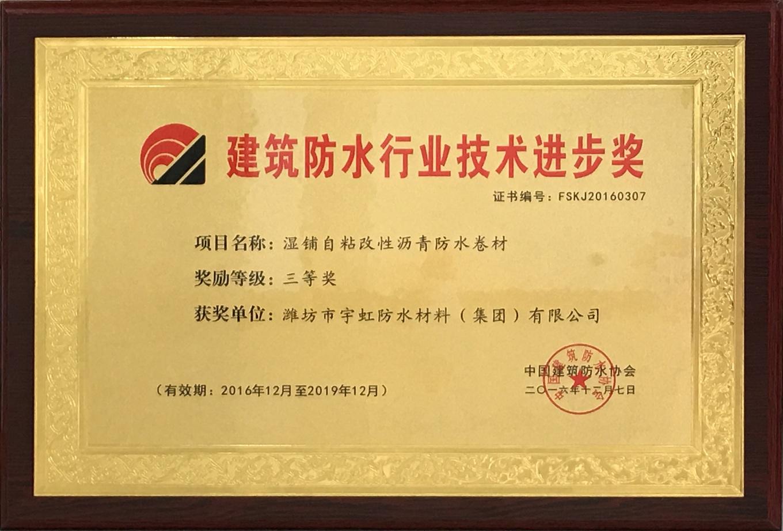 <span>&nbsp;建筑防水行业技术进步奖</span>